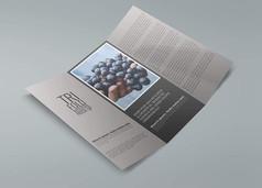 三折画册宣传手册内页展示样机