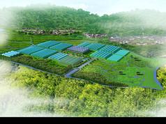 300亩农业园区规划