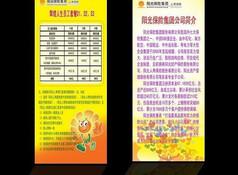 阳光保险集团宣传单页