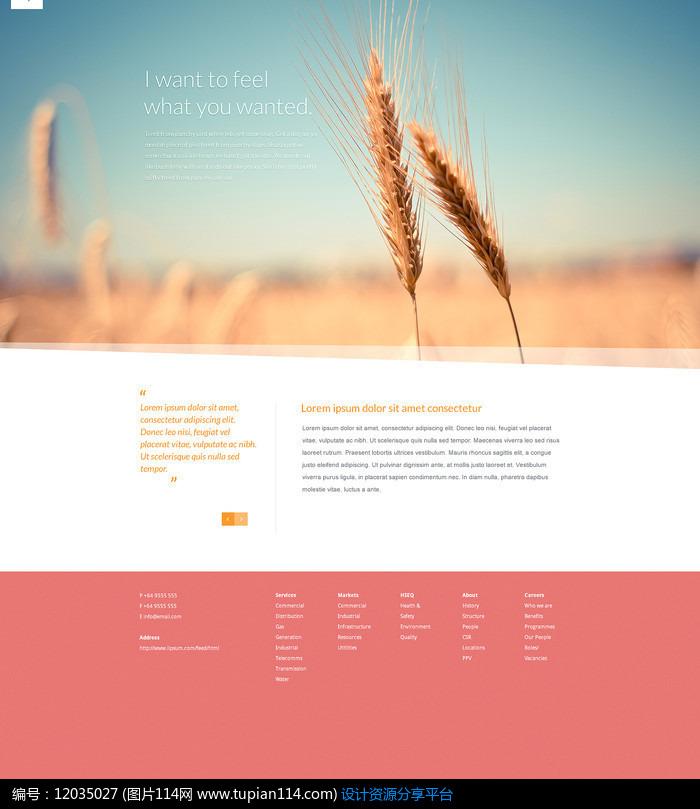 外國暖色調商務網站模板