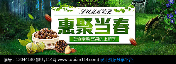 惠聚当春坚果促销宣传海报