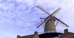 荷兰风车视频