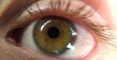 眼睛瞳孔微距近距离实拍