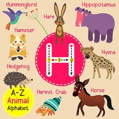 动物字母表