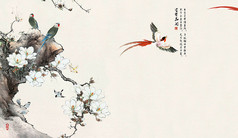 中国风花鸟背景