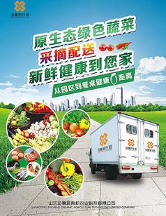 蔬菜配送宣传海报