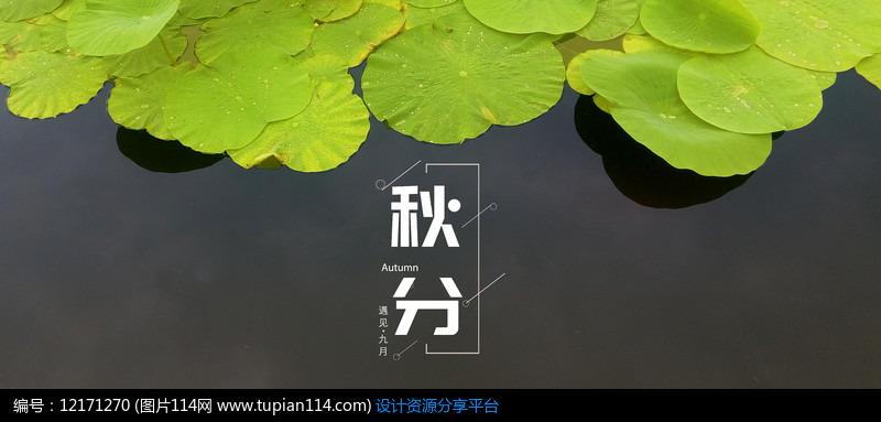 秋分节气传统风格海报