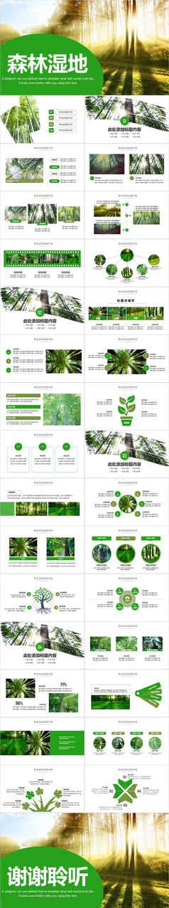 森林湿地保护森林PPT模板